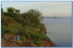 Рыбалка на фидер – весьма известная и модная.