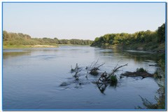 Рыбалка и отдых на берегу Дона.