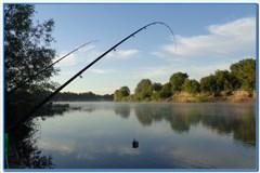 Июльская рыбалка на Дону.