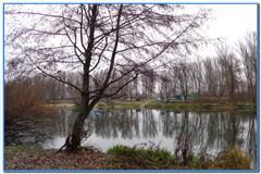 Рыбалка в ноябре на реке Оскол.