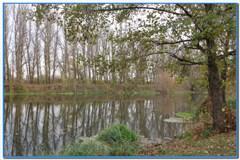 Осенняя рыбалка на реке Оскол.