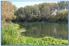 Осенний фидер на реке Оскол.