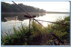 Июньская рыбалка на Дону.