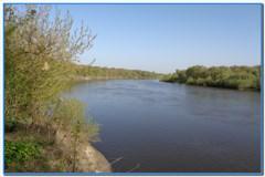 Рыбалка на Дону в начале мая.