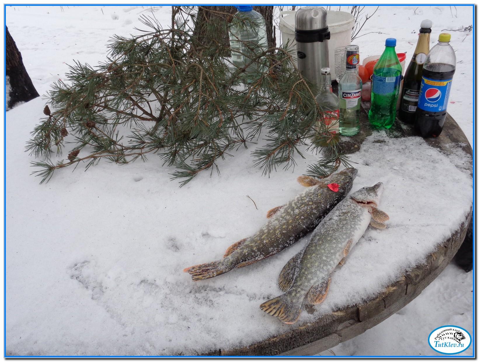 рыбацкие поздравления с новым годом одном взгляду фото